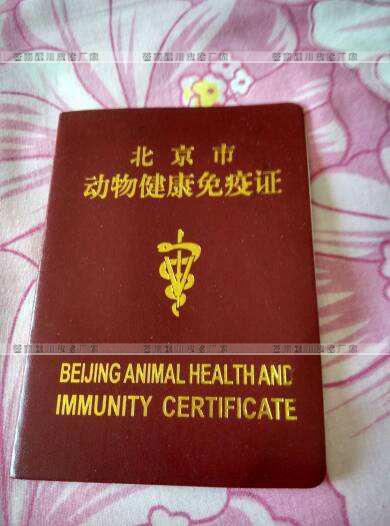 北京动物健康免疫证